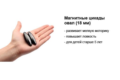 магнитные цикады 18 мм.jpg
