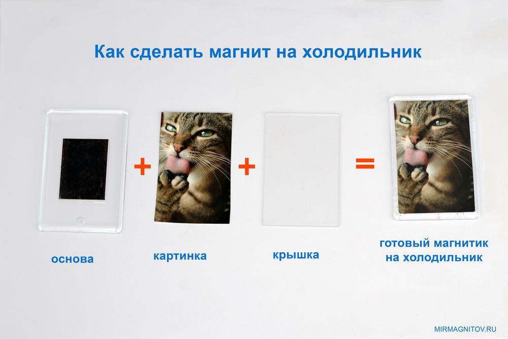 как сделать магнит с котом.jpg
